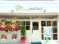 ヘアサロン ハルハル(hair salon hal hal)