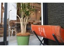 観葉植物や木材を多用する癒し空間