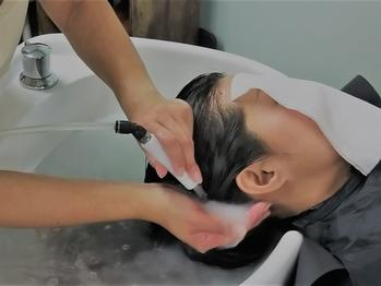 ヘアープラント(Hair Plant)